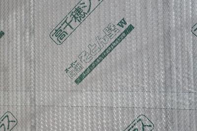 Pc252447